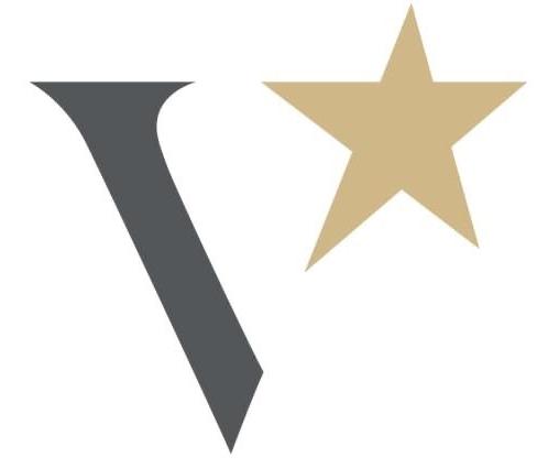 Logo Vonkels crop